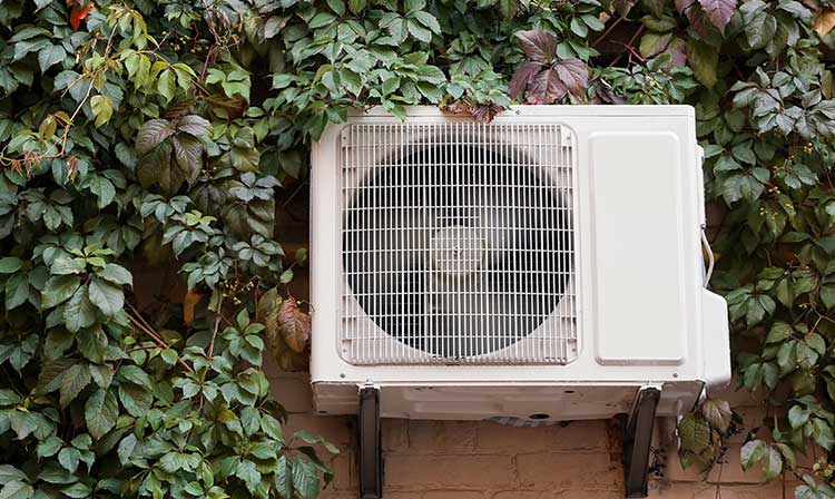 take-care-of-your-AC-by-making-sure-that-the-compressor-unit-outside-clear-and-clean